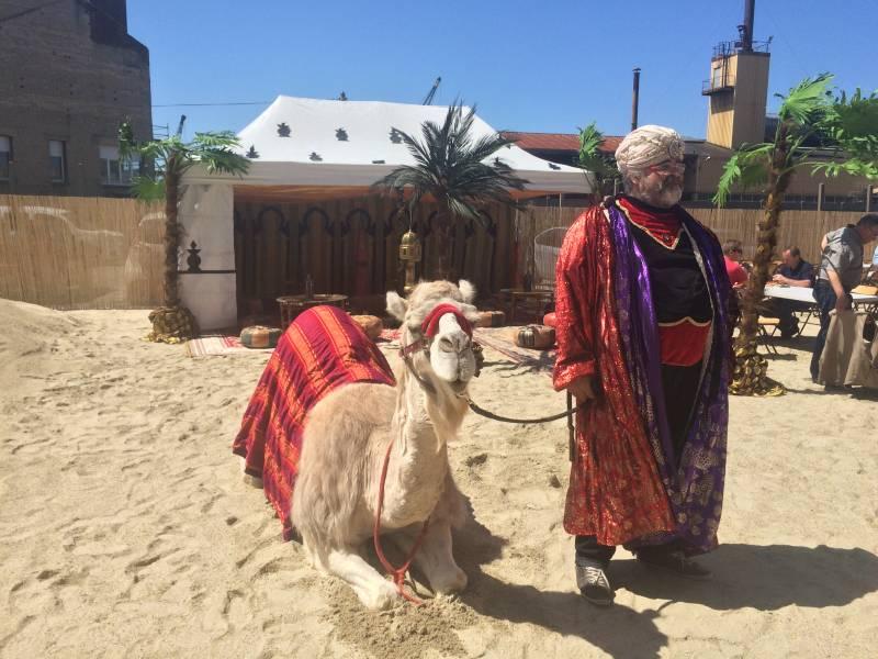 prestation chameau oriental